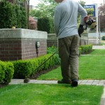 Lawn & Landscape Maintenance Services