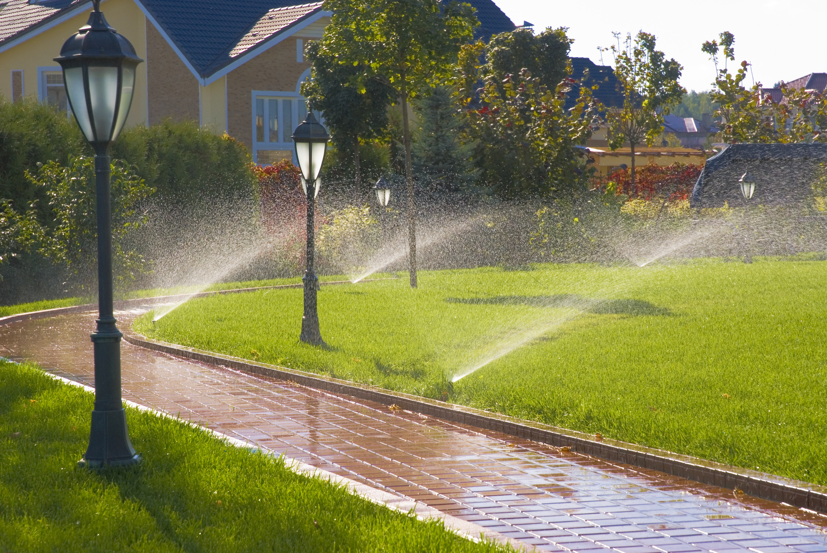Irrigation services installation blow outs repairs for Home garden irrigation design