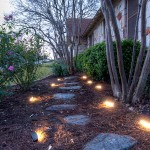Commercial area landscaping Services
